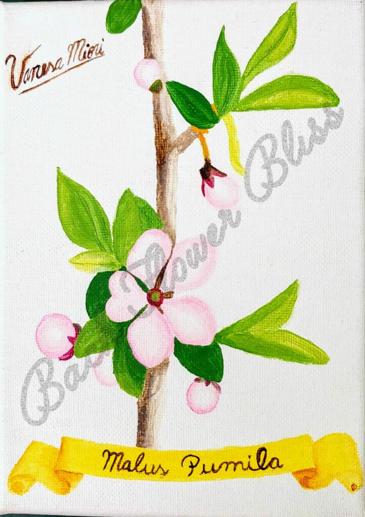 Crab Apple Bach Flower Bliss