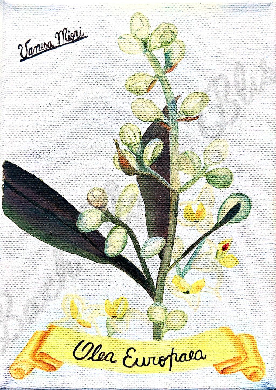 Olive Bach Flower